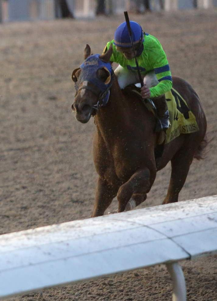 International Star is rising heading into Saturday's Louisiana Derby _lowres