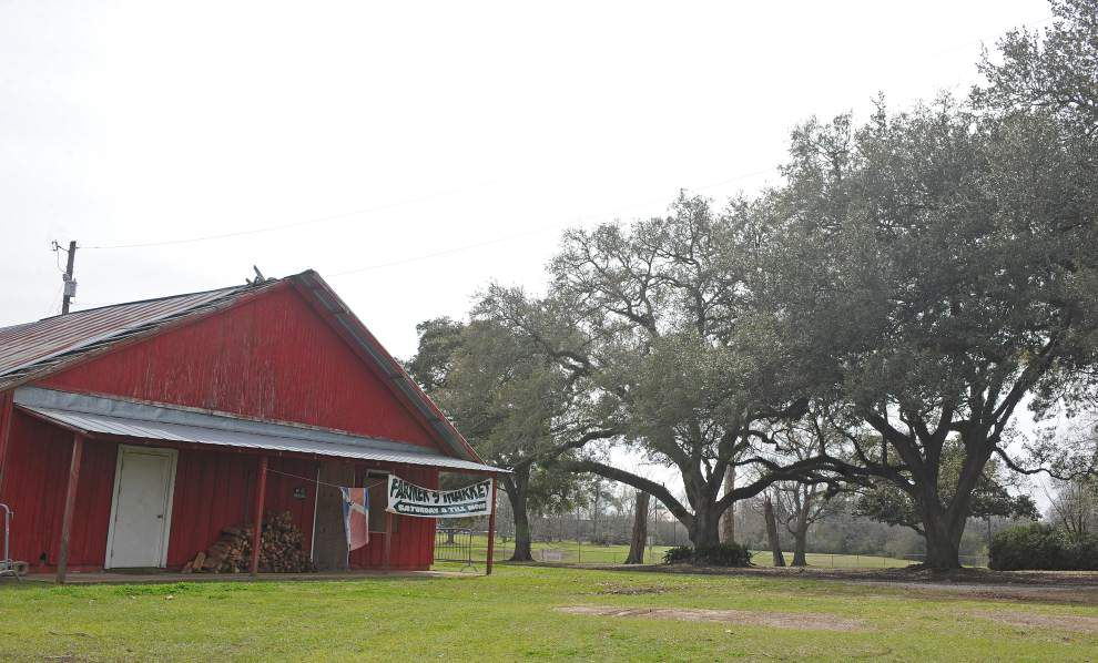 Council votes Tuesday on new park plans for Horse Farm _lowres