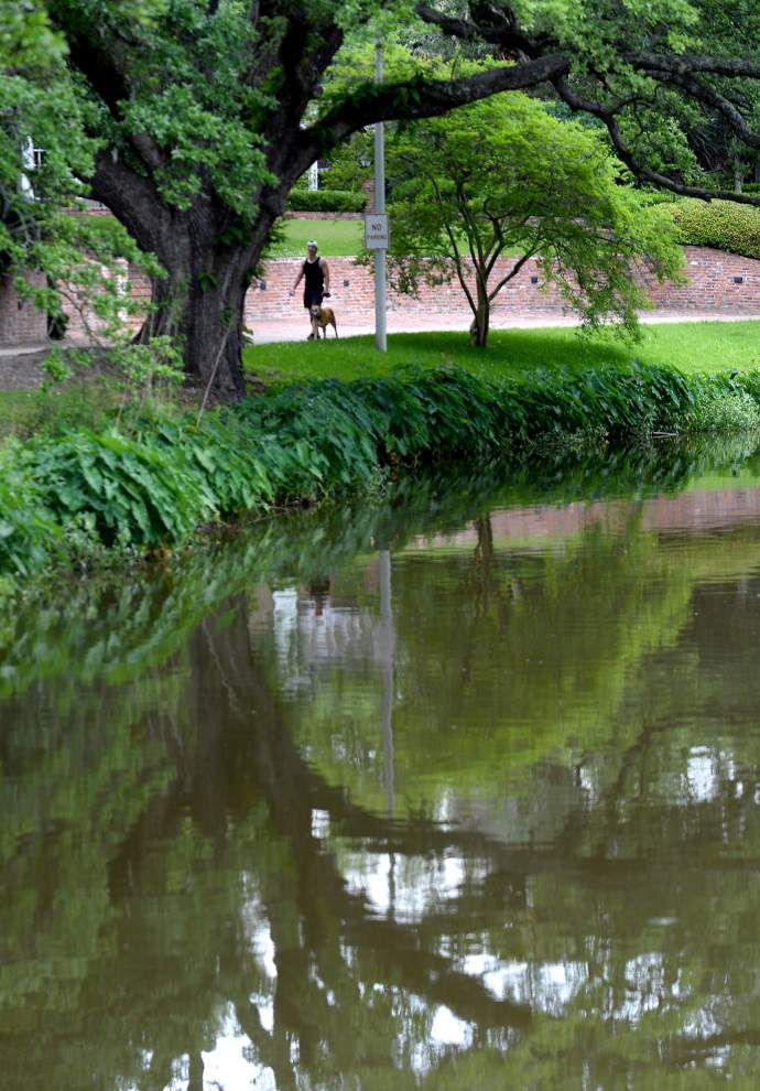 Capital Outlay bill calls for $40 million to plan, fund Baton Rouge lakes restoration project _lowres