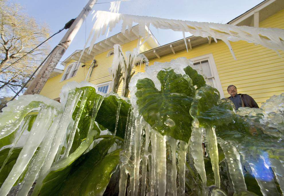Icy weather (copy)