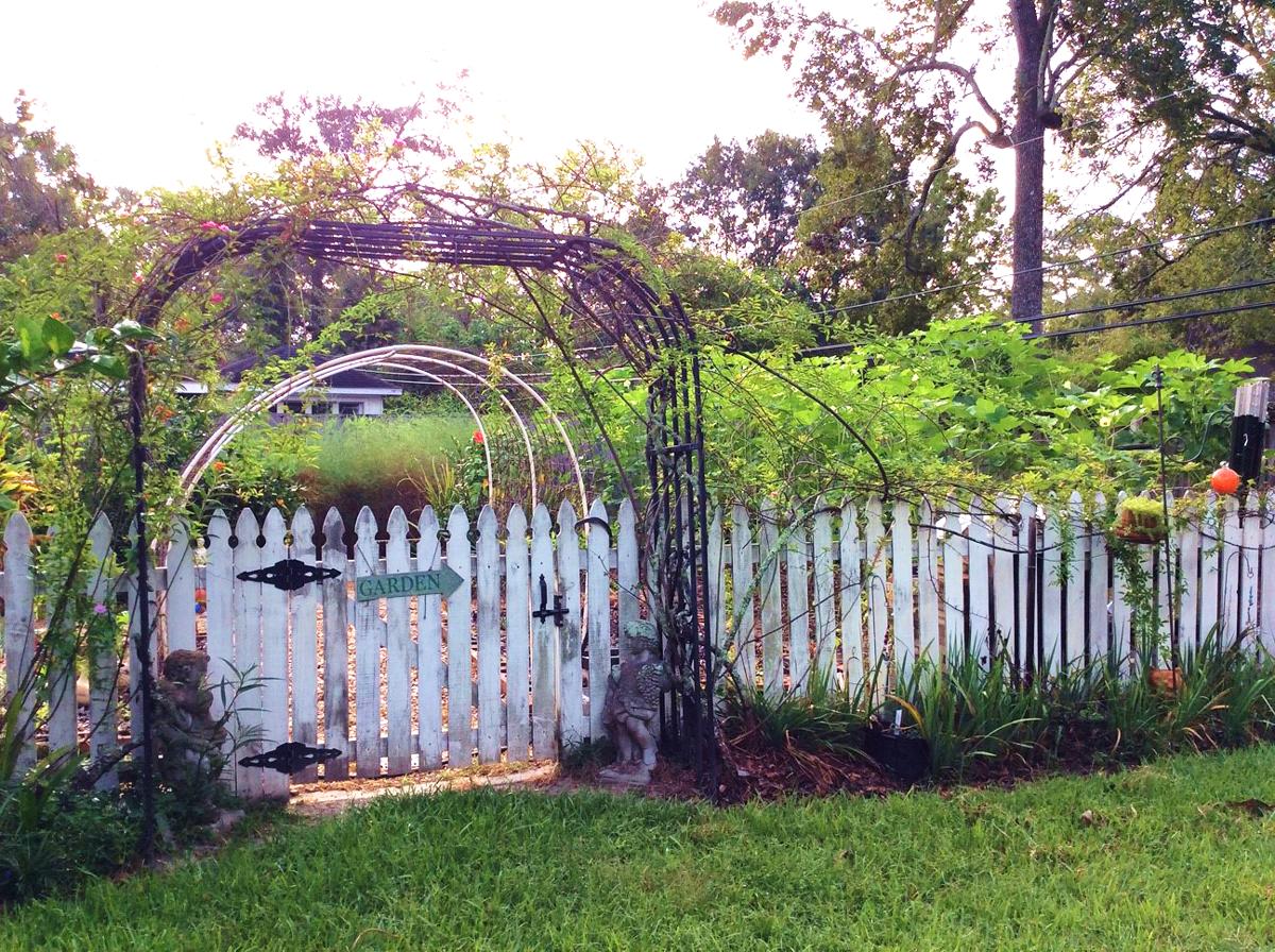 Taylor garden