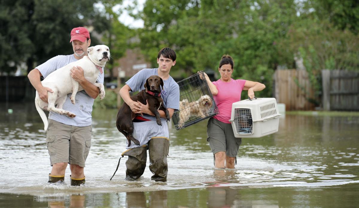 ACA.stormfloodprep.071119