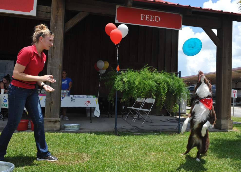 Photos: Dog Day at Ranch Outlet _lowres