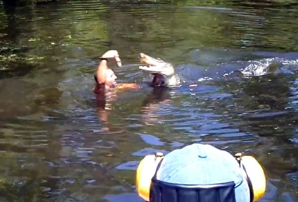 Tour operators ordered to stop feeding gators _lowres