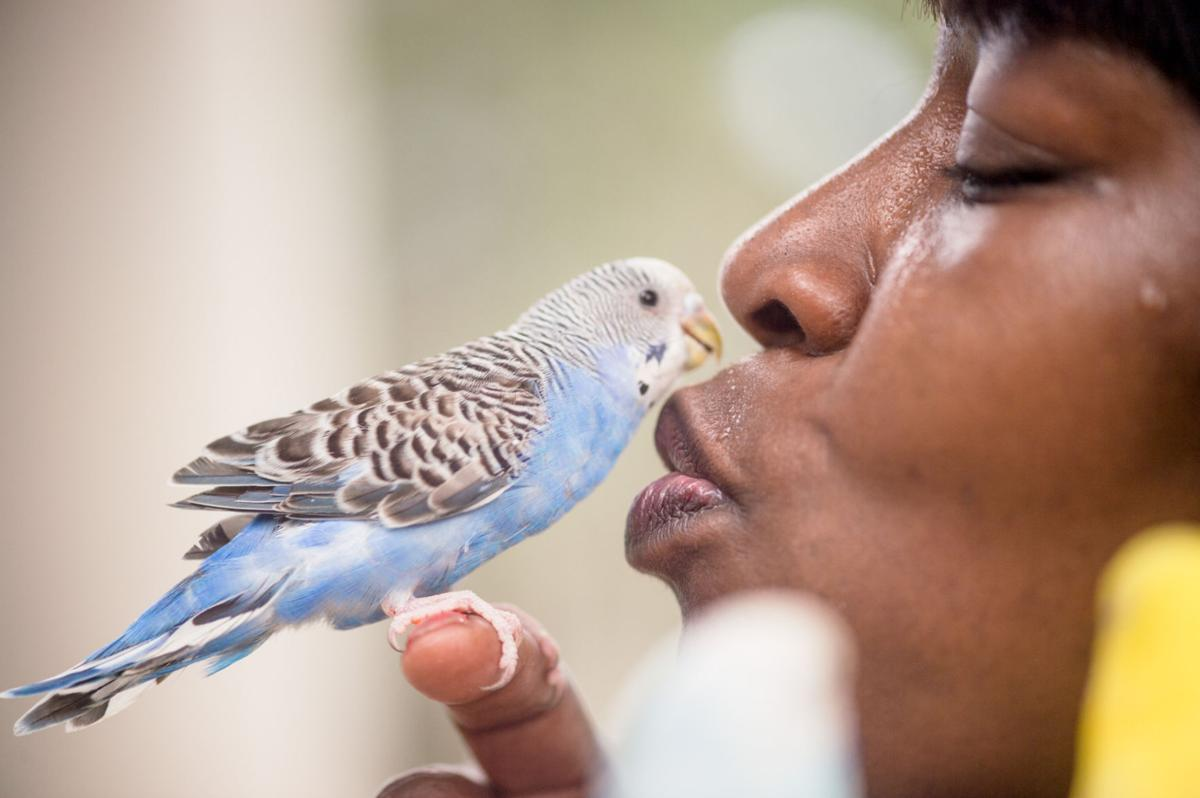birdwhisperernb.100517006.JPG