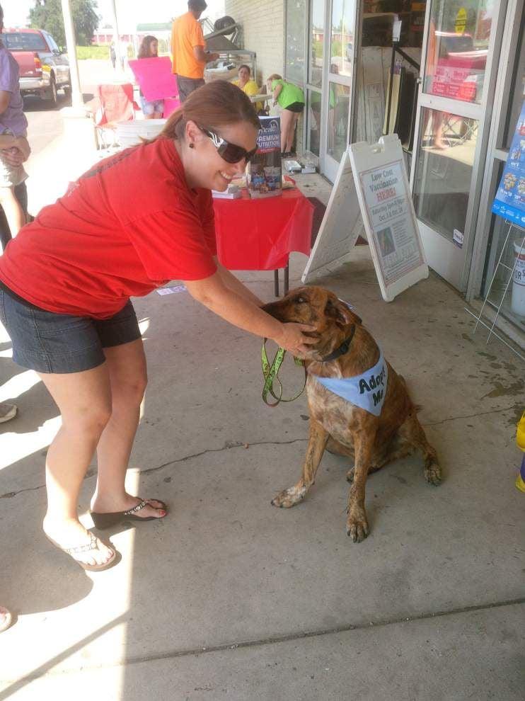 Pet Appreciation week advocates for animals _lowres