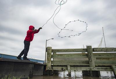 ACA.wildartfishing.01.adv