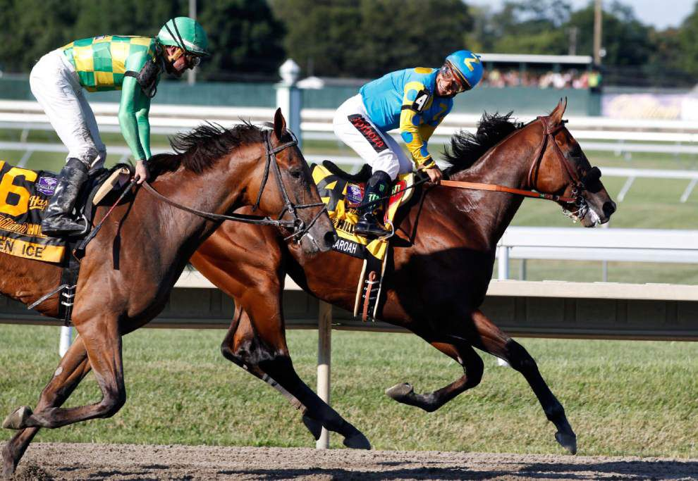 Back in the saddle: American Pharoah cruises to win at Haskell Invitational _lowres