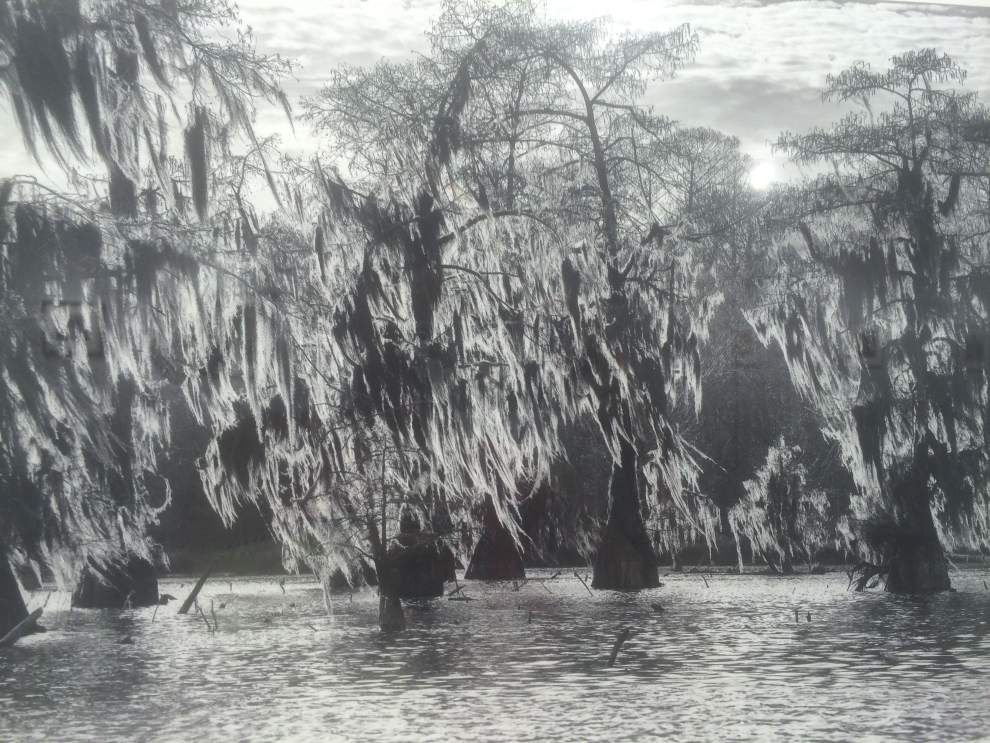"""20""""x20""""x20"""": Small art has sizeable impact in juried LSU exhibit _lowres"""