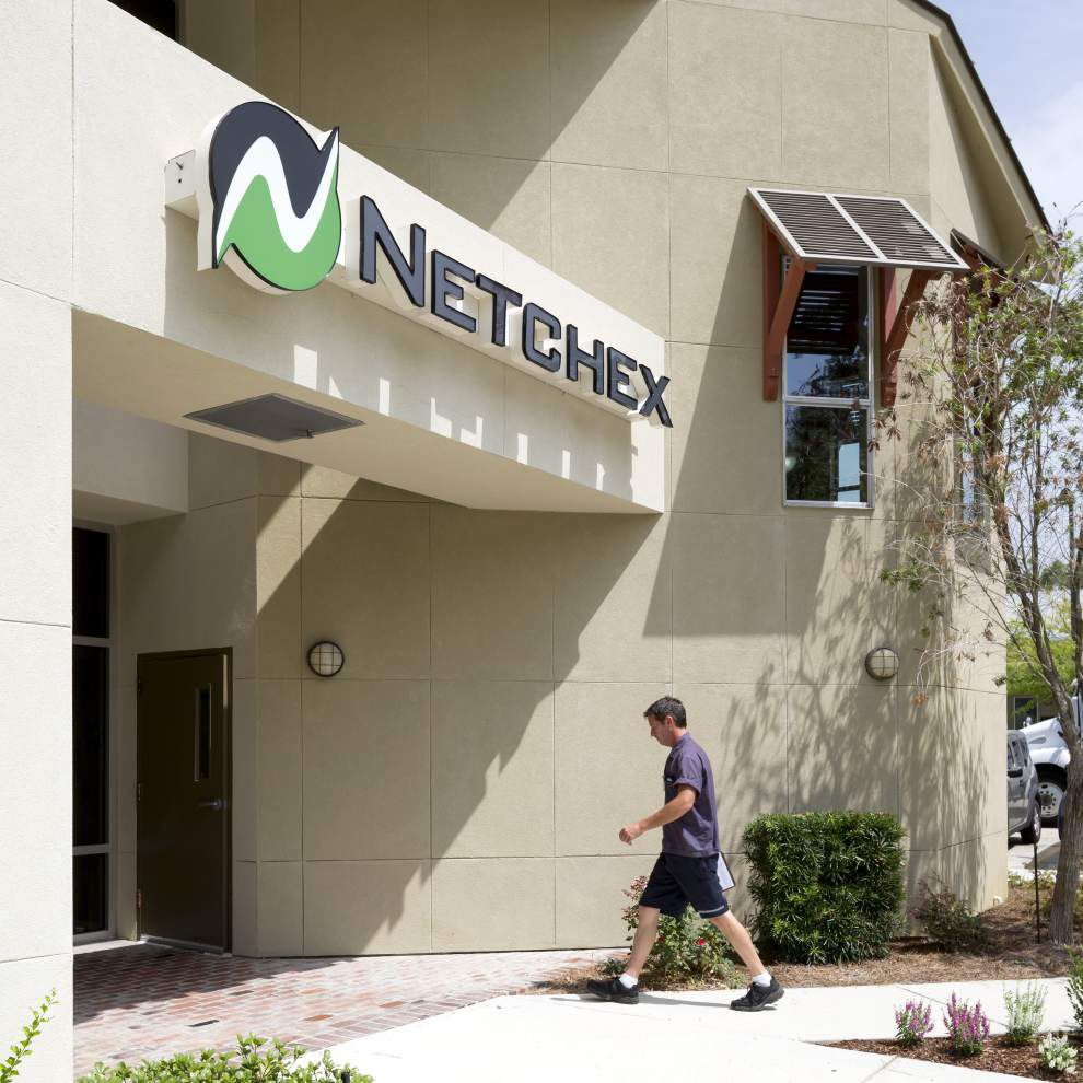Netchex founders build online business after Internet bubble bursts _lowres