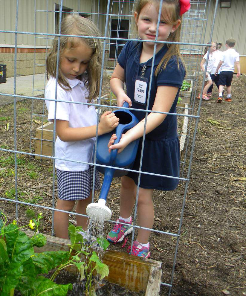 Young gardeners at Bains find flavor in their harvest in West Feliciana _lowres
