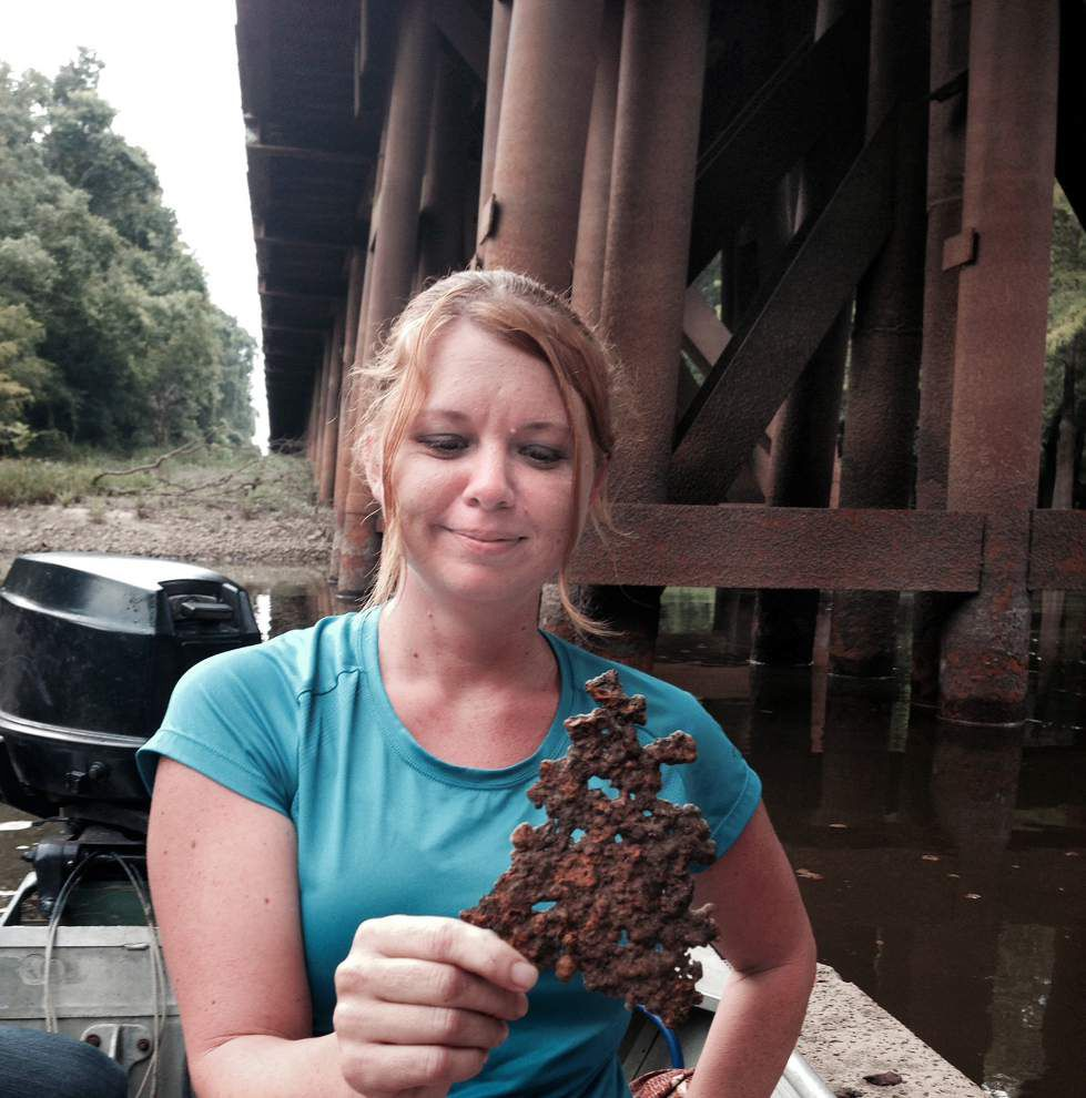 Corroding railroad trestle over swamp worries advocate _lowres