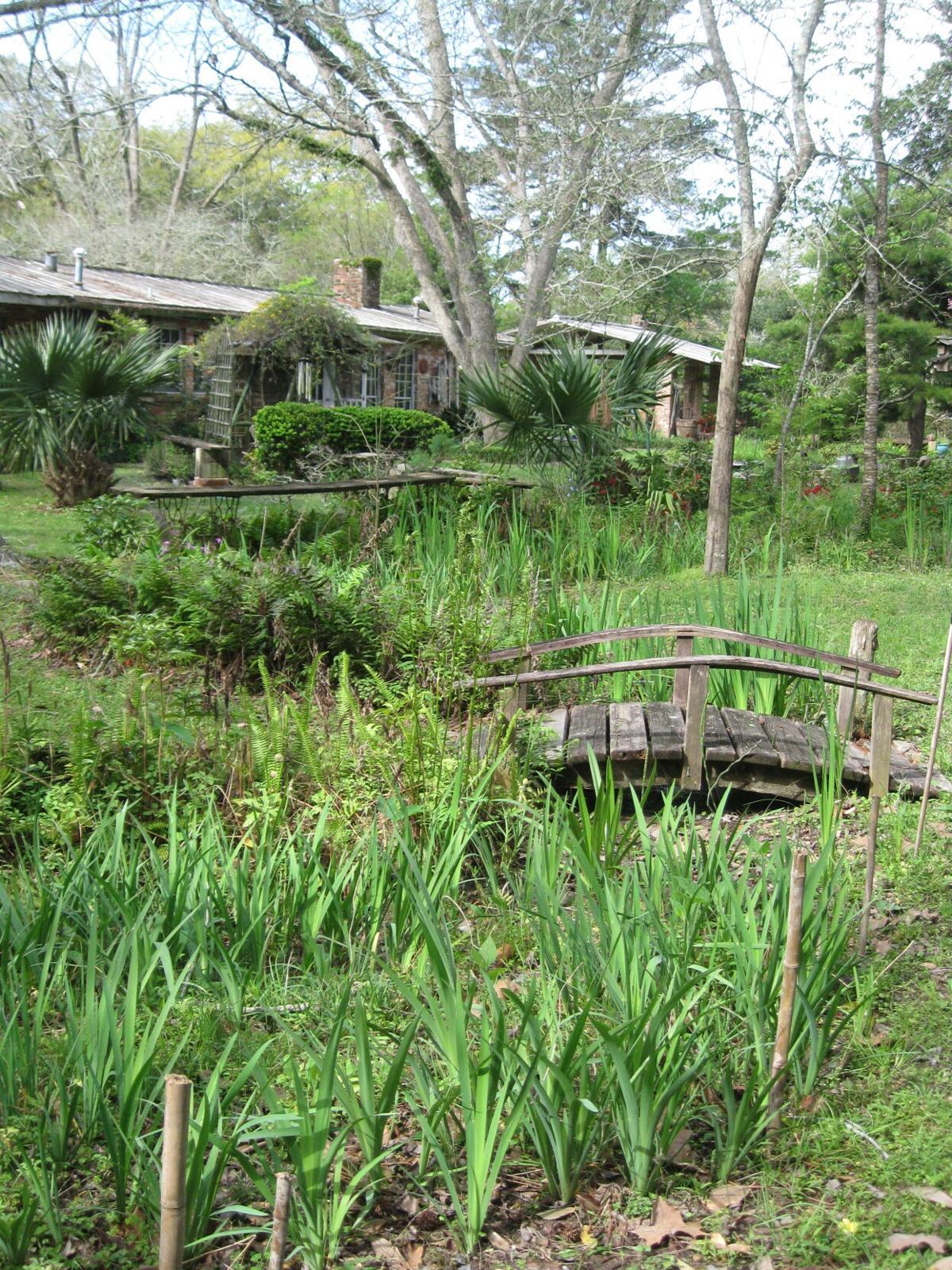 Julia Hawkins Native Plant Garden.JPG