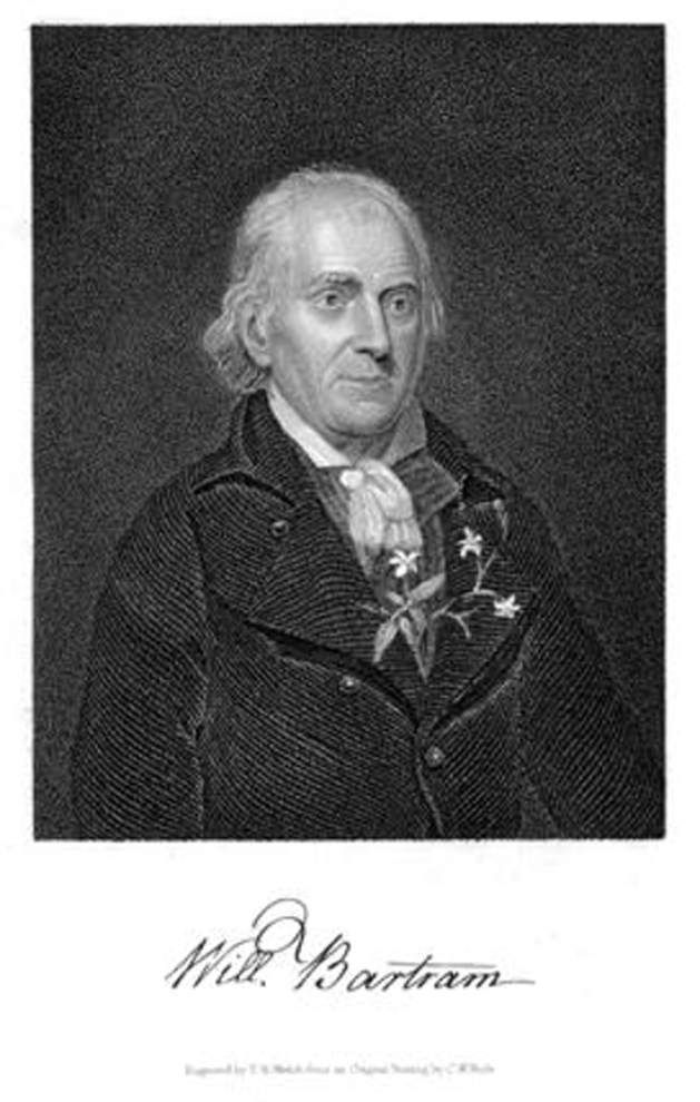 Naturalist William Bartram
