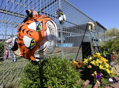 Tony the tiger memorial (stock)