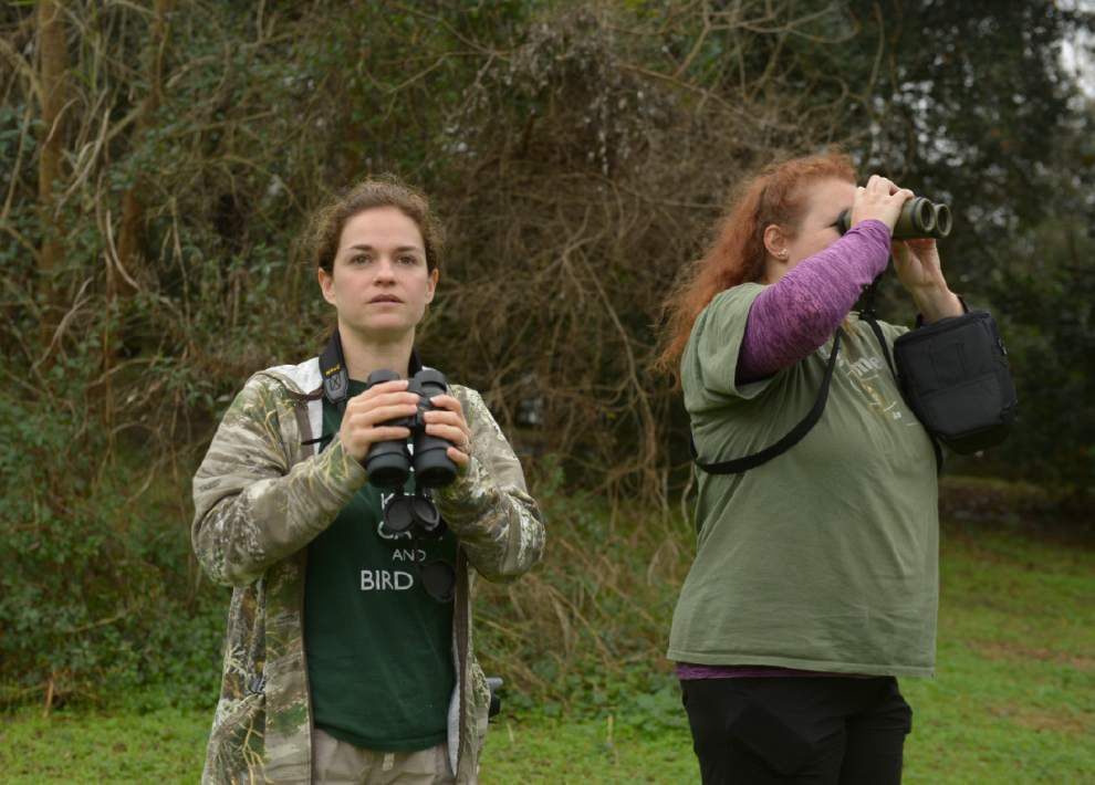 Teams spend day counting birds _lowres