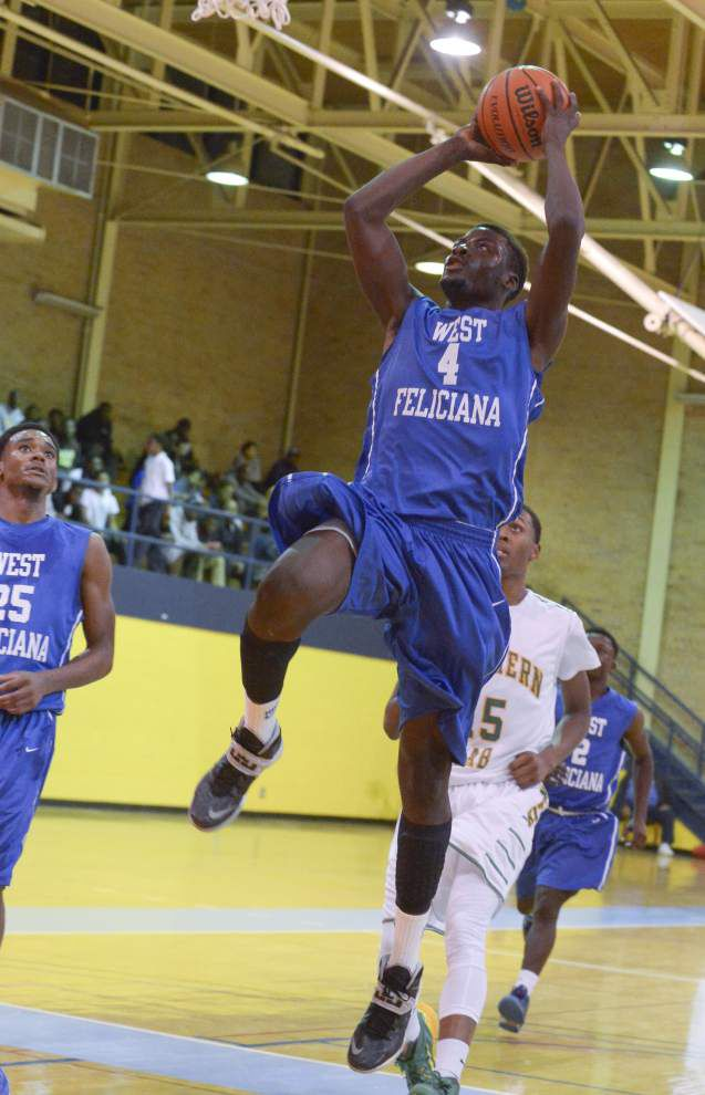 Southern Lab runs away from West Feliciana _lowres