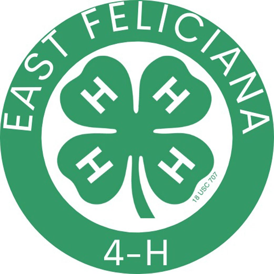 New EF 4-H logo