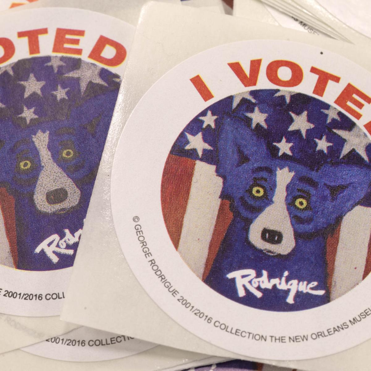 What's on the Nov  6 ballot in Acadiana? Check it out