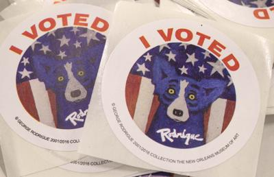 BR.voting.110916  TS  239.jpg (copy)