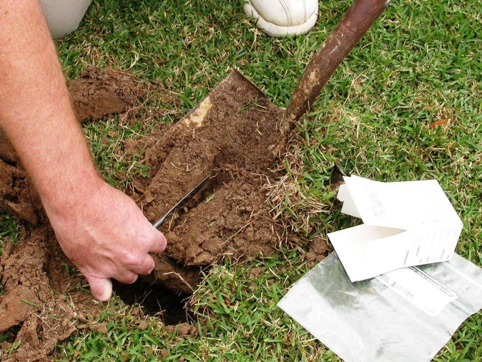 Garden News: It's time to test your soil _lowres