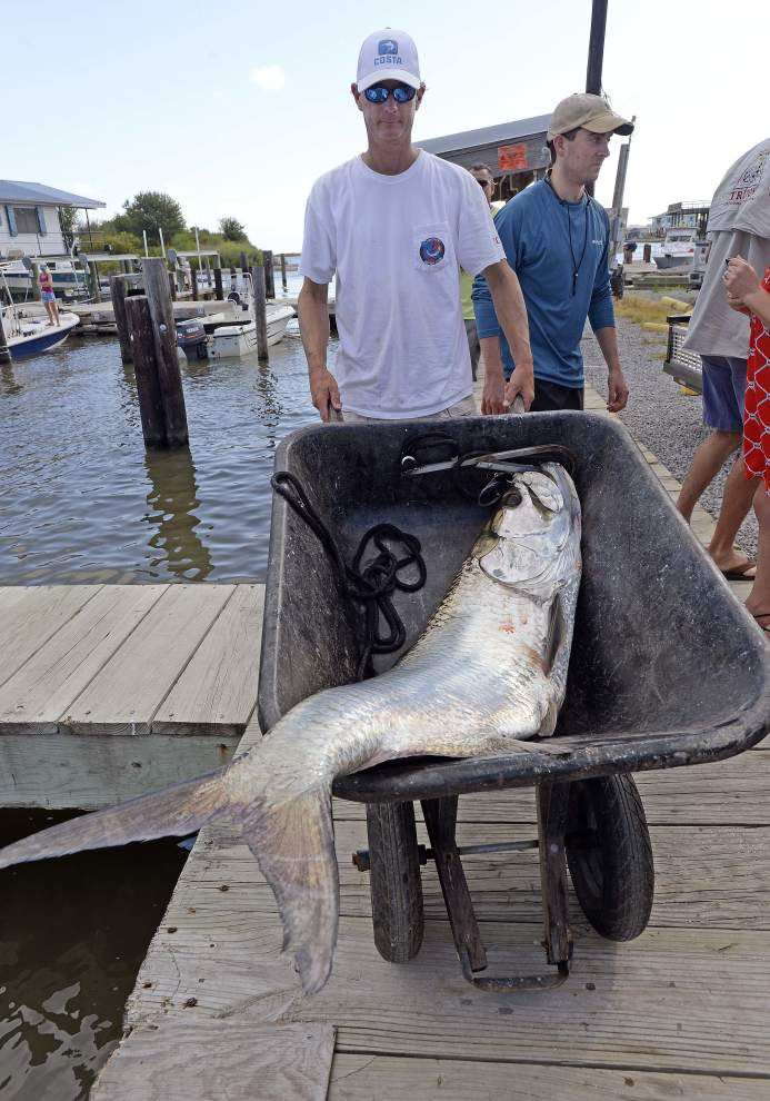 Photos: Houma man brings in 82 pound tarpon on second day of Grand Isle Tarpon Rodeo _lowres