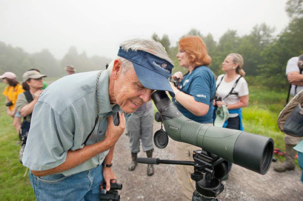 South La. birders focus binoculars on wood storks _lowres