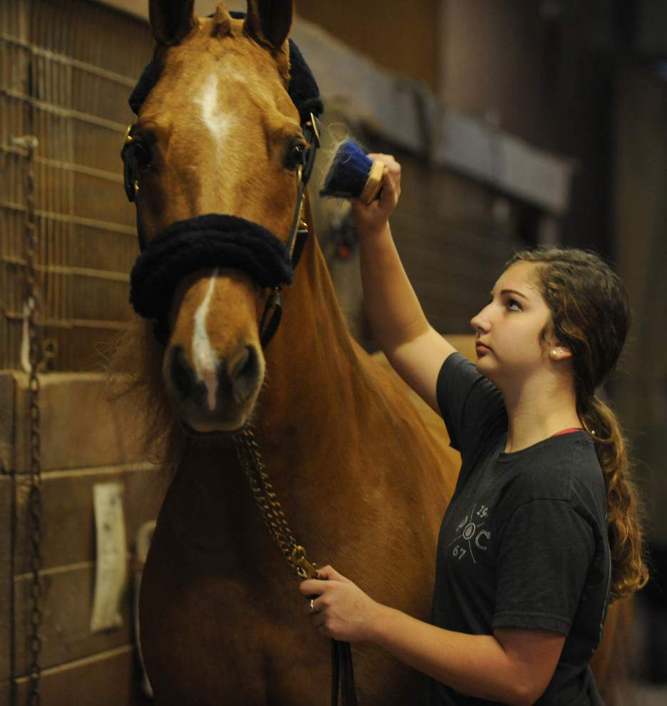 Teen girl shines in horse events _lowres