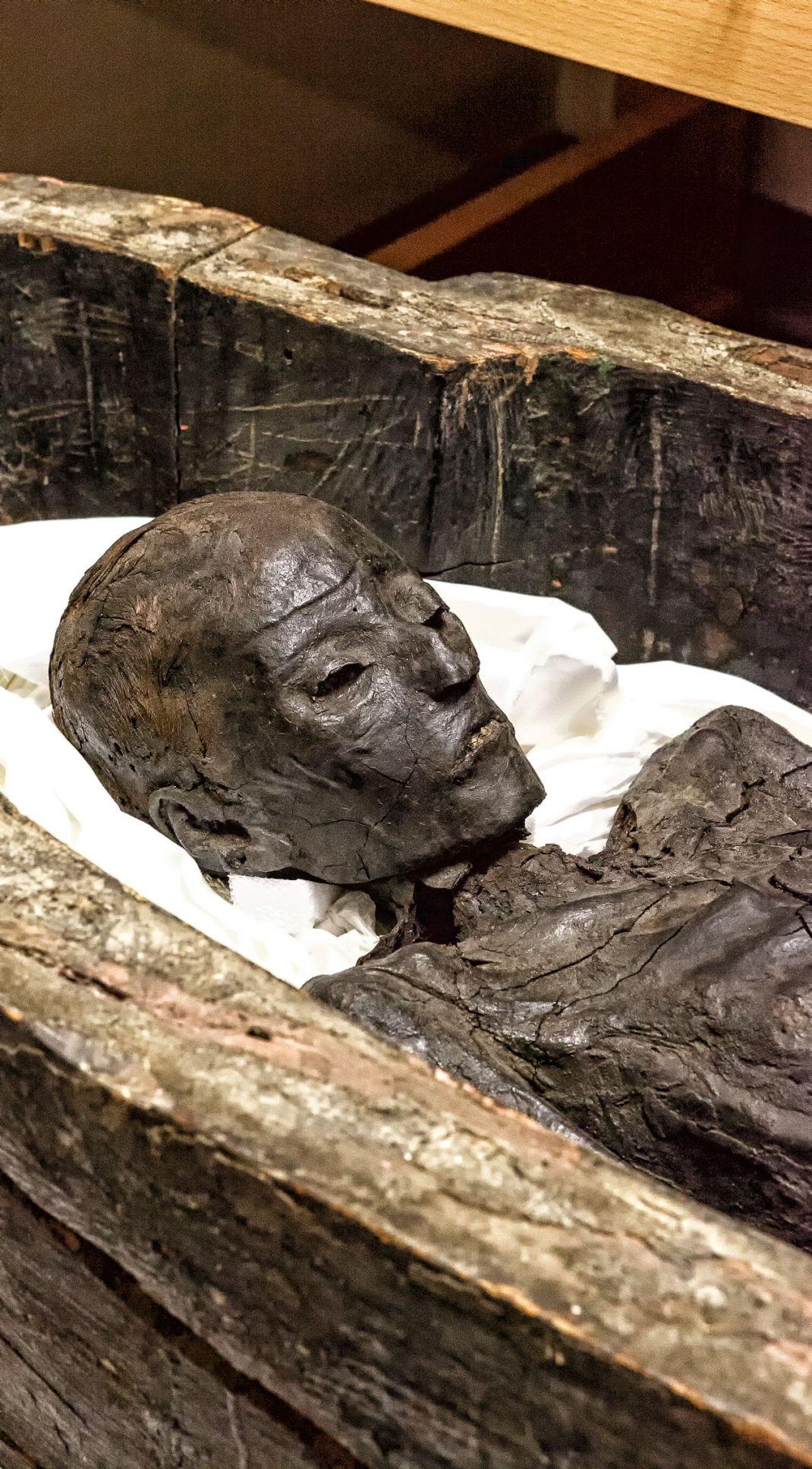 Tulane's Mummies