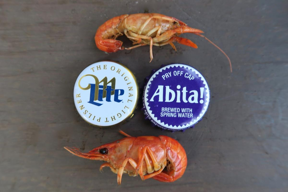 ba8cc23895 Tiny crawfish, shown with beer caps for scale, are a sign of the early  season and historically cold winter in Louisiana in 2018.