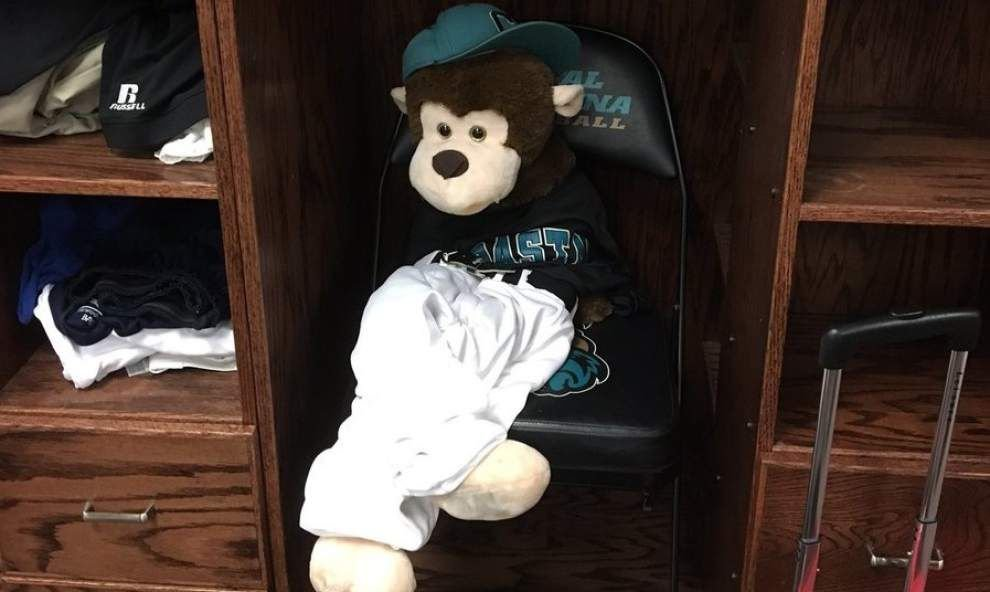 'Best $20 we ever spent': Not a Rally Possum, but CCU's Rafiki carries surging Chanticleers to Baton Rouge _lowres