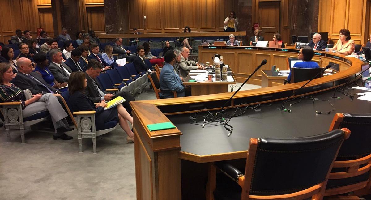 MFP Senate hearing 050219