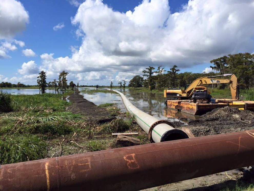 Private companies restoring wetlands in Plaquemines Parish are employing mitigation bank process _lowres