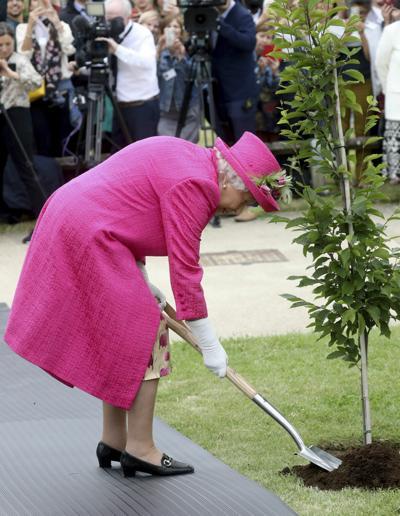 Britain Royal Queen plants a tree (copy)