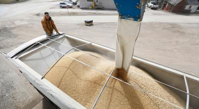 China Trade US Soybeans