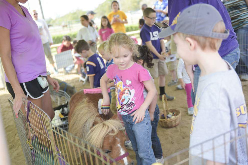 Southside community photo gallery for Oct. 22, 2015 _lowres