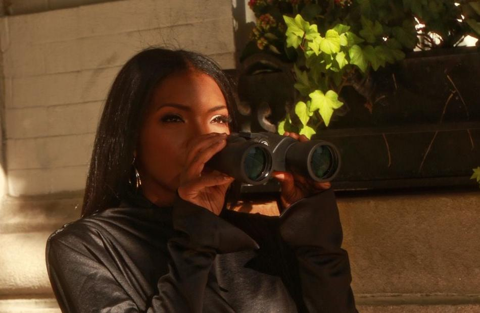 Brianne Joseph, sly fox investigationss