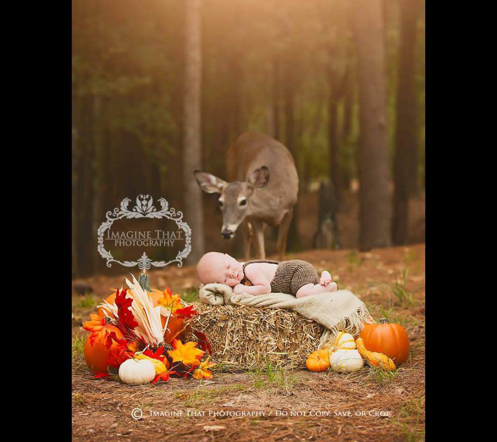 Ultimate photobomb: Deer steps into picture of Louisiana baby for once-in-a-lifetime shot _lowres
