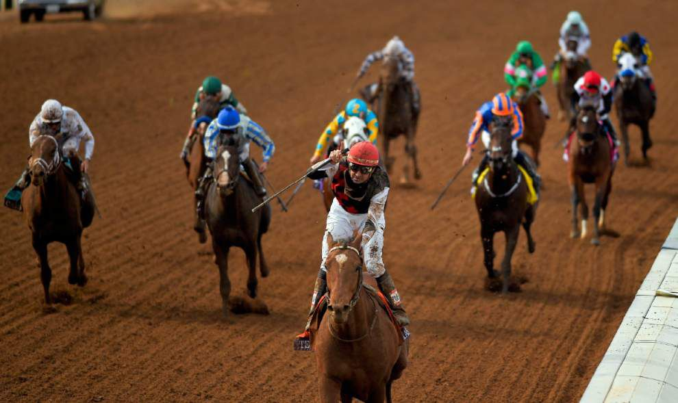 Texas Red, the Breeders' Cup Juvenile winner, is in line to run in the Risen Star Stakes _lowres