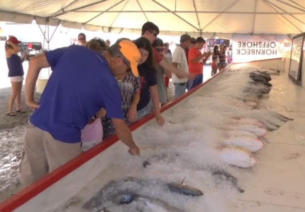Video: Final day at International Grand Isle Tarpon Rodeo _lowres