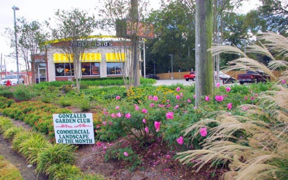 Garden club gets tour of member's home, garden _lowres