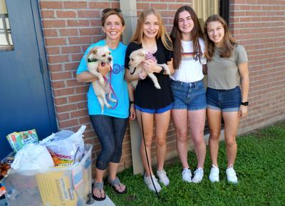 Runnels dog rescue Dana Kahn.jpg
