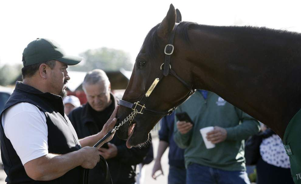 After Preakness win, Exaggerator and the victorious Desormeaux brothers are in line to face Nyquist again at the Belmont _lowres
