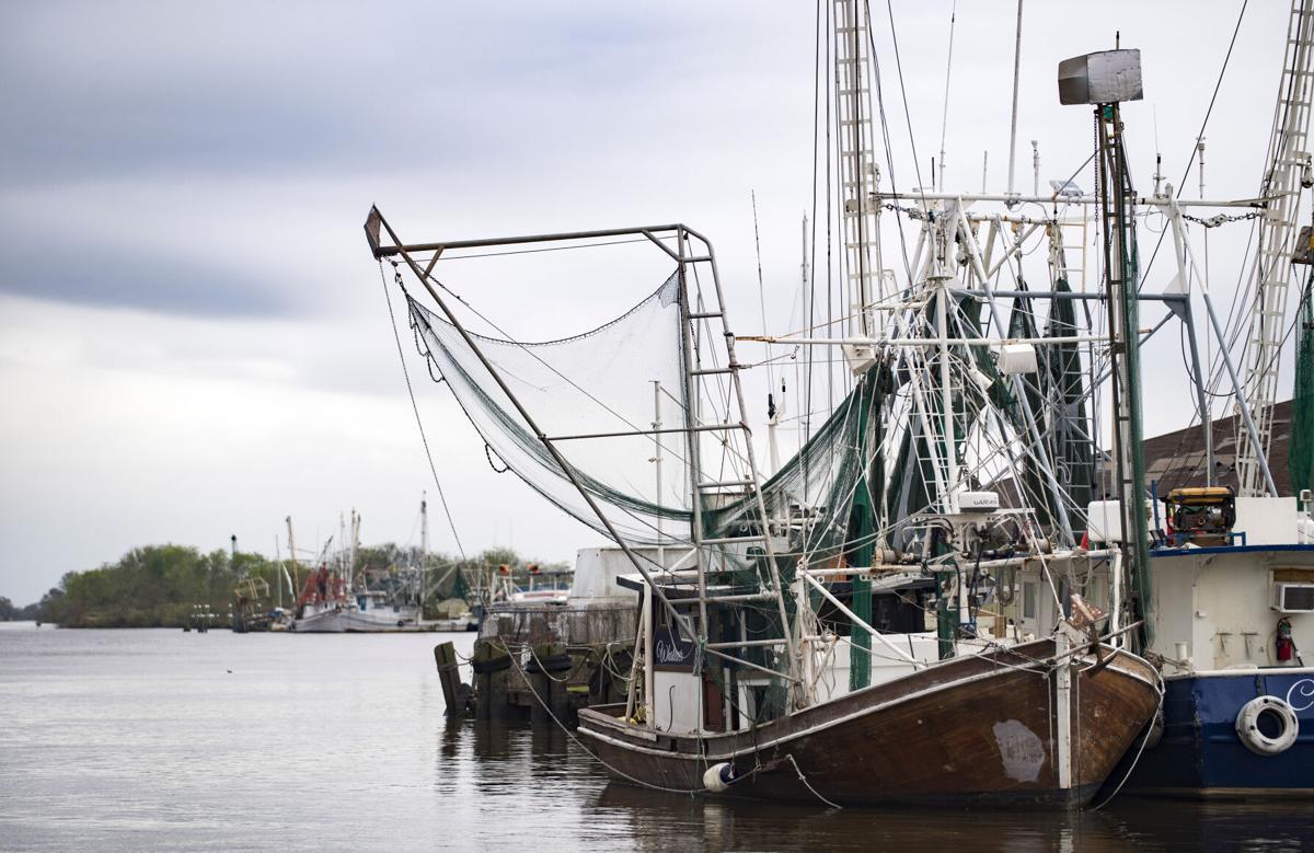ACA.seafood.003.120420
