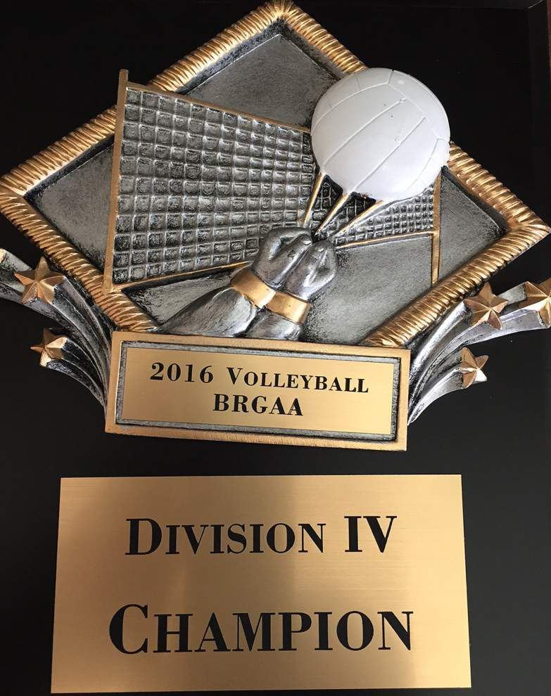 Copper Mill volleyball takes Division IV title _lowres