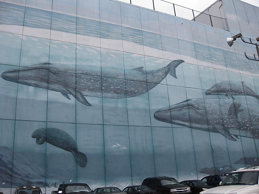 What's the history of the large mural depicting sea life on the side of a building off Convention Center Boulevard by the Riverwalk?_lowres
