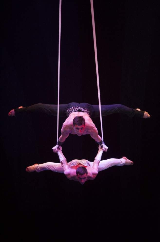 Circus animal trainer talks about life with her four-legged family _lowres