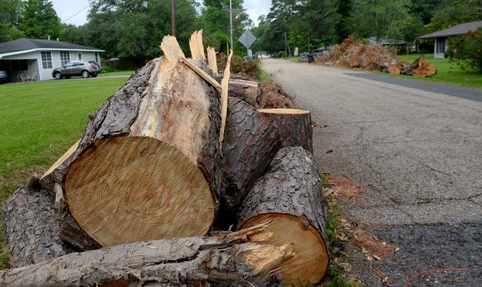 Still have tree limbs waiting to be picked up from the storm? City-parish kicking cleanup into overdrive _lowres