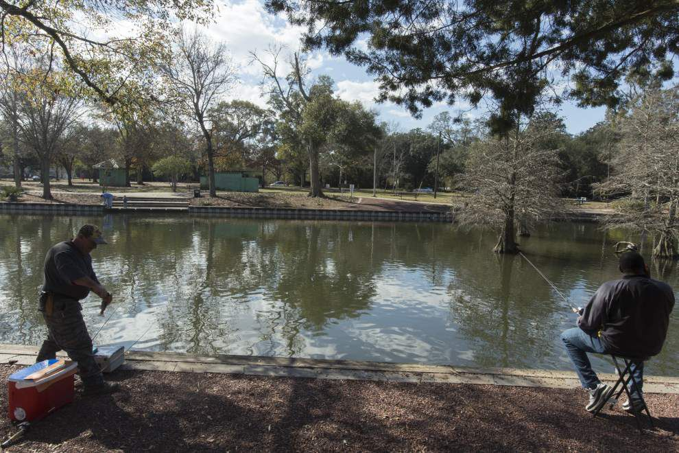Volunteers dig in for tree planting project at Lafayette's Girard Park _lowres