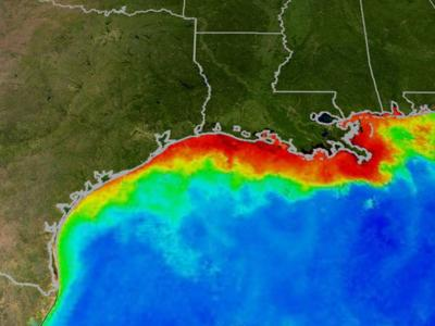 The count: the size of the 'dead zone' along the Gulf Coast_lowres